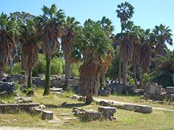 Ausgrabungsstätte in der Landschaft von Griechenland auf Kos