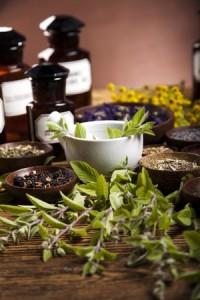 Kräuter wie Mönchspfeffer zum Fruchtbarkeit fördern