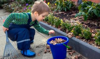 Hecke schneiden im Garten