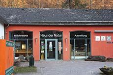 Ausstellung - Natur erleben im Harz