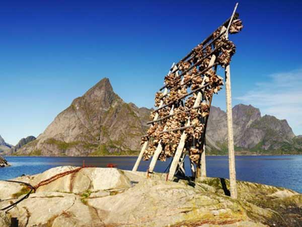 Norwegen Reise: Zeit und Route