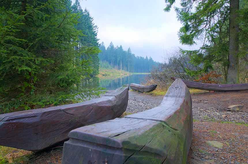 Wandern im Harz Urlaub