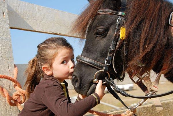 Geburtstag auf einem Ponyhof
