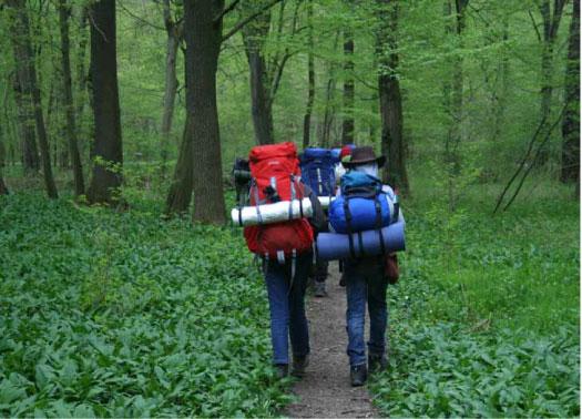 Klassenfahrt durch Wald bei Regen