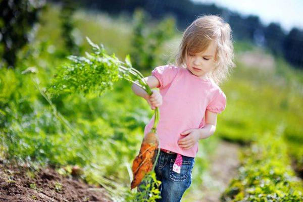 Beete anlegen: Gartengestaltung für Kinder