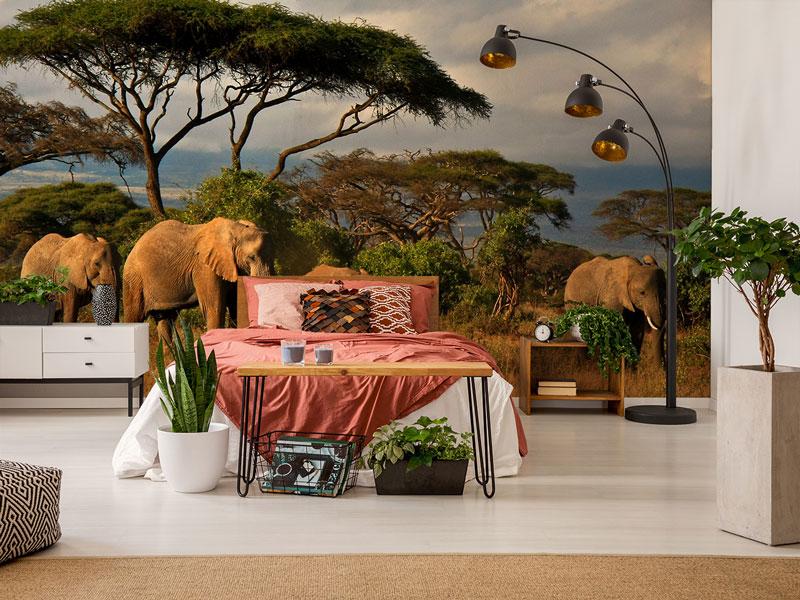 Elefanten in der Savanne an der Wand im Wohnzimmer