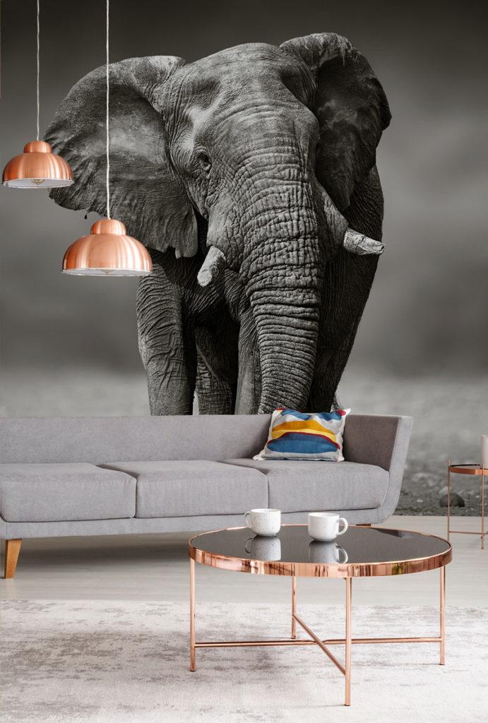 Tapete Elefant