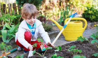 Mit Kindern beim Urban Gardening auch in der Stadt gärtnern